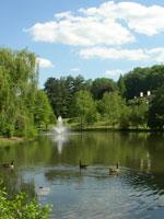 Willows Estate
